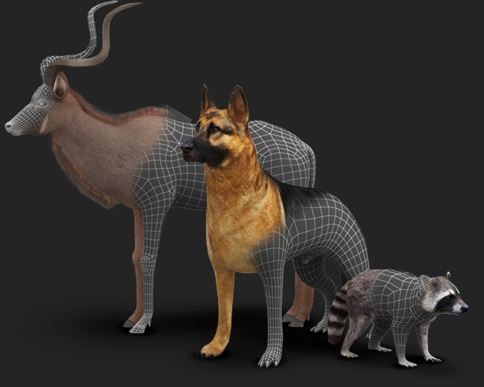 Polycount optimization of any model